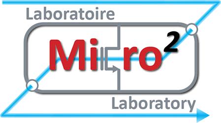 Micro2 lab